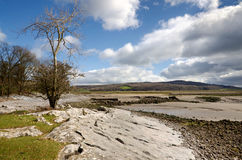 Limestone scenery in Cumbria Royalty Free Stock Photos