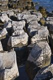 Limestone seashore Royalty Free Stock Photo