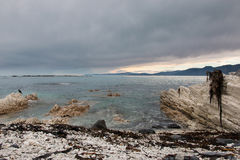 Limestone slabs and rocks on a shore Royalty Free Stock Images