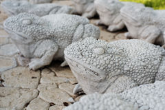 Limestone statues of frogs. Stone walkway. Frogs on alley in beautiful garden with flowers and trees around. Summer in the garden Stock Image