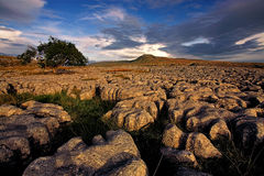 Limestone at sunset. Large limestone pavement on Twistleton Scar in the Yorkshire Dales Stock Photos