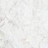 Limestone surface fragment Stock Photos