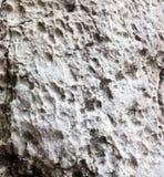 Limestone texture. From stone block Stock Photo
