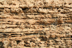 The limestone texture Stock Image