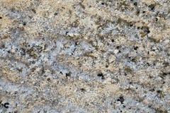 Limestone texture blueish hues Stock Image