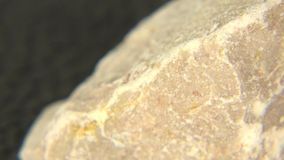 Limestone Texture Close-up stock video