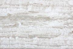 Limestone Royalty Free Stock Photo
