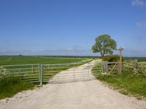 Limestone track and Ash tree with metal farm gate and footpath sign. A limestone farm track with metal gates near a mature ash tree and hawthorn hedgerow with Stock Photos
