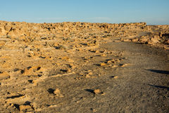 Limestone tubes landscape in Cape Bridgewater, Australia Stock Photo