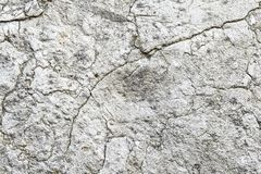 Free Limestone Wall Of Textura Stock Images - 144109144