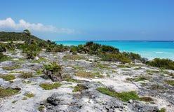 limestonekust Arkivbild