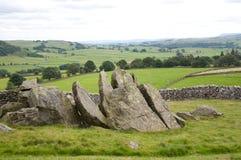 limestonerockslabs Arkivbild