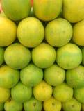Limetta εσπεριδοειδών, που θεωρείται εναλλακτικά μια ποικιλία citrus limon, Γ limon Limetta ` `, είναι ένα είδος εσπεριδοειδών, k στοκ φωτογραφία
