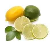 Limetta, limone e foglio Fotografia Stock