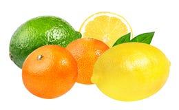 Limetta, mandarini freschi e limone isolati su bianco Immagini Stock