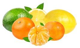 Limetta, mandarini freschi e limone isolati su bianco Fotografie Stock