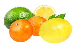 Limetta, mandarini freschi e limone isolati su bianco Immagini Stock Libere da Diritti