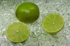 Limette Fotografia Stock