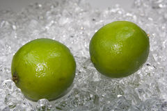 Limette-2008-. Cold fresh green limette on ice Stock Photo