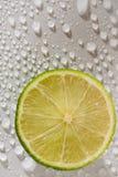Limette avec des baisses de l'eau Photo libre de droits