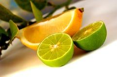 Limette e limone Fotografie Stock