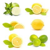 limette e limoni freschi - collage Fotografia Stock
