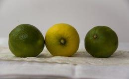Limette e limoni su una tovaglia fotografie stock