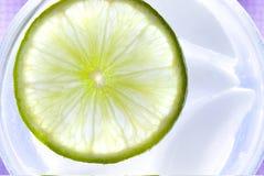Limette régénératrice Image libre de droits