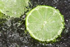 Limette sur la glace Image libre de droits