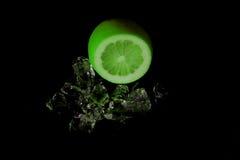 Limette sur les roches Image libre de droits