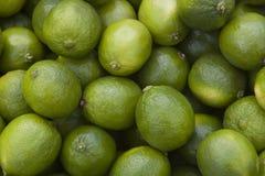 Limettes au marché du fermier Image stock