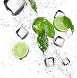 Limettes avec l'éclaboussure de l'eau et les glaçons Photo stock