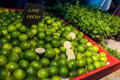 Limettes et menthe fraîches Photo libre de droits