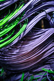 Limite, câbles de réseau dans le serveur Photos stock