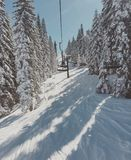 Limite della neve Immagine Stock