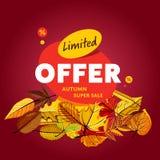 Limited offer banner. Autumn super sale Stock Images