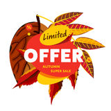 Limited offer banner. Autumn super sale Stock Photography