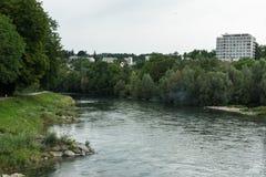 Limmat-Fluss mit Bäumen Lizenzfreies Stockbild