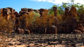 Limmen National Park, Nothern Territory, Australia Royalty Free Stock Photos