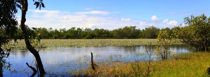 Limmen nationalpark, nordligt territorium, Australien royaltyfria bilder