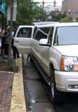 limo royaltyfri bild