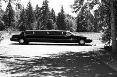 Limo en la boda Imagen de archivo