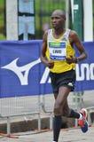 Corridore maratona della città 2013 di Milano fotografia stock libera da diritti