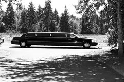 Limo at wedding Stock Image