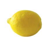 limon Obrazy Stock
