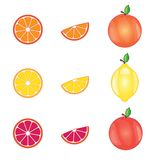 Limon, pomarańczowy i grapefruitowy Zdjęcia Stock