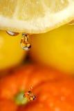 Limonada Imagen de archivo libre de regalías