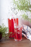 limonada Foto de Stock Royalty Free