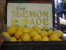limonada Imagens de Stock Royalty Free