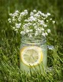 Limonada adentro que él se chiba con las flores minúsculas Fotos de archivo